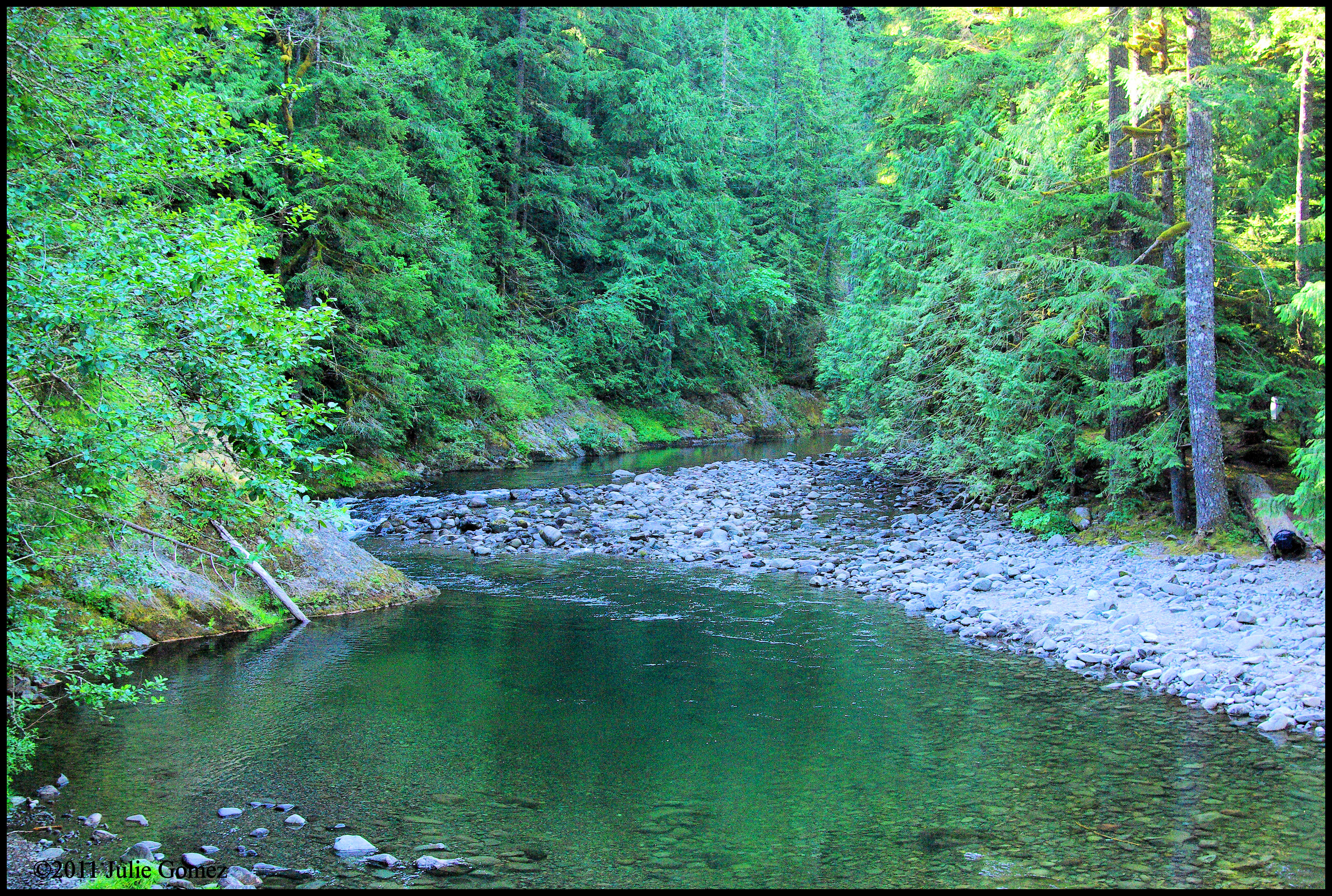 A morning hike through mount hood s salmon river gorge for The hood river