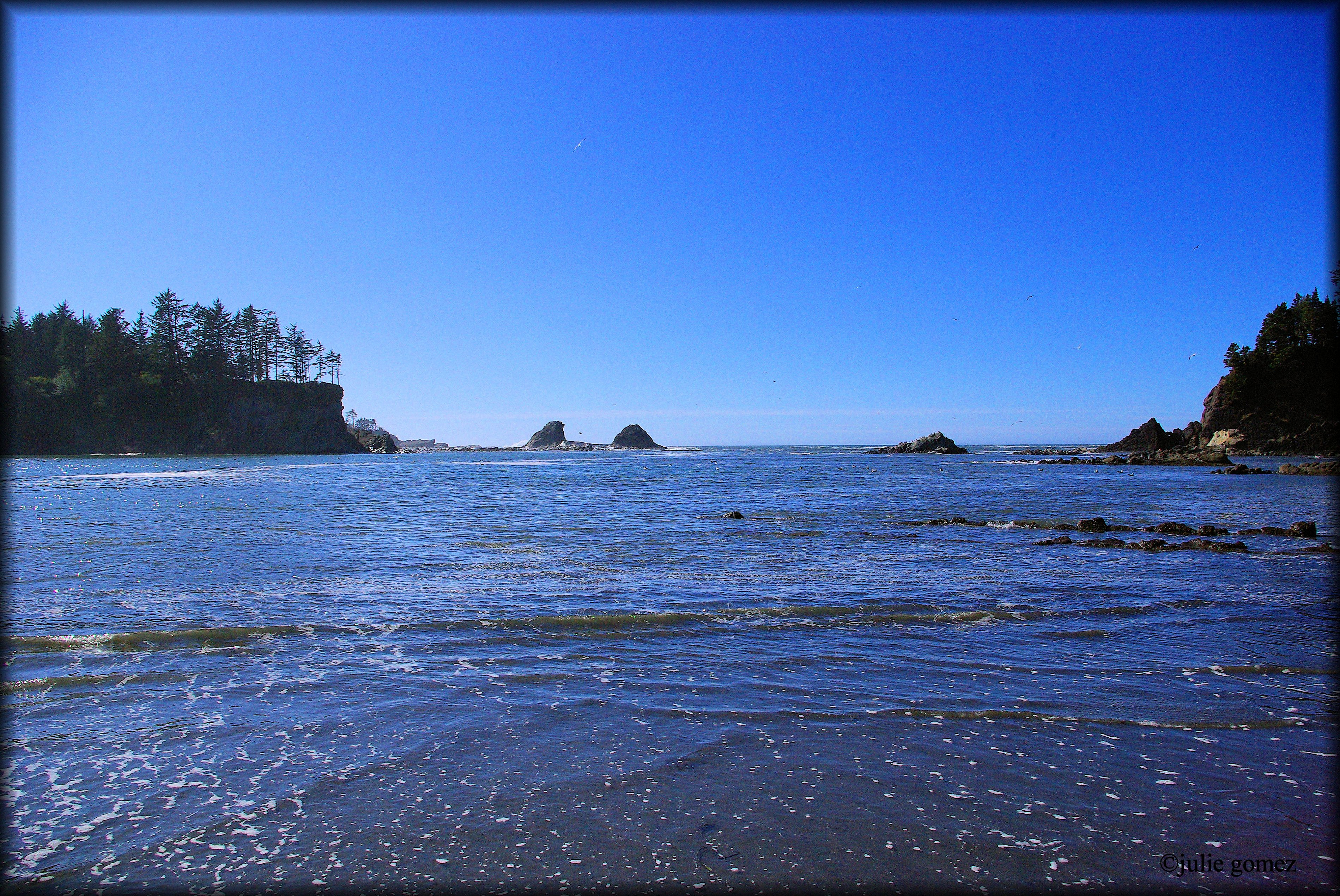 dating coos bay oregon Let menkarta allow you to look for essentially the most appropriate gay cruising in coos bay even though you keep in coos bay our wide gay meeting places catalog is getting bigger just about every day thanks to people like you.