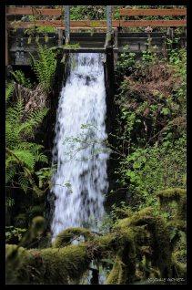 Cedar Creek as it drains from the flume