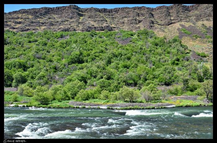 Deschutes River, Oak Springs Rapids, Class IV