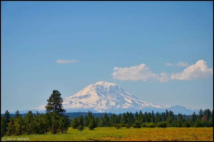 Mount Adams and the plateau of Wahkiacus, Washington.