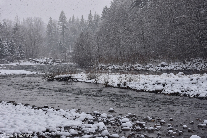 New Year's Day snow along the Sandy River