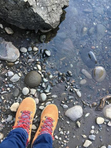 Along the Clackamas River Barton OR